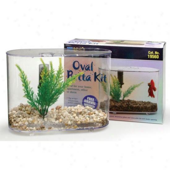 Lees Aquarium & Pet Mibi Oval Aquarium Betta Kit