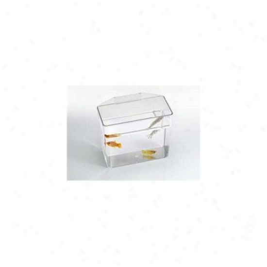 Lees Pet Produtcs Ale10516 Heavy D8ty Specimen Container - Small