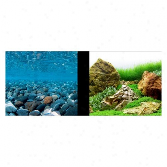 Marina Aquarium Background - Stony River/japanese Garden