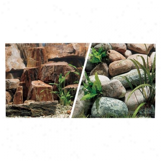 Marina Freshwater Aquarium Background - Rocky Canyon/riverbed