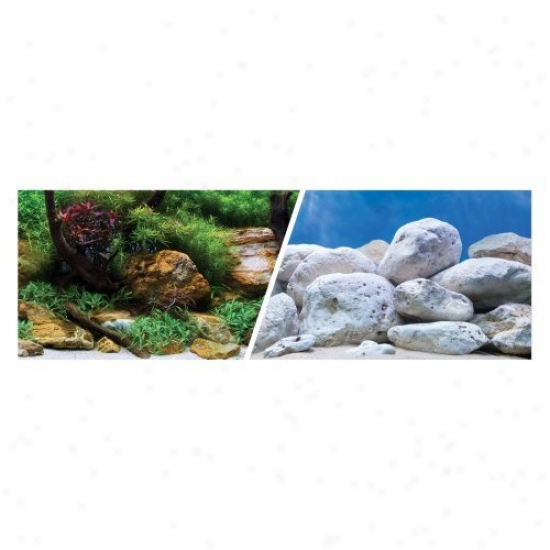Marina Seaview Aquarium Background Seascape/natural Mystic