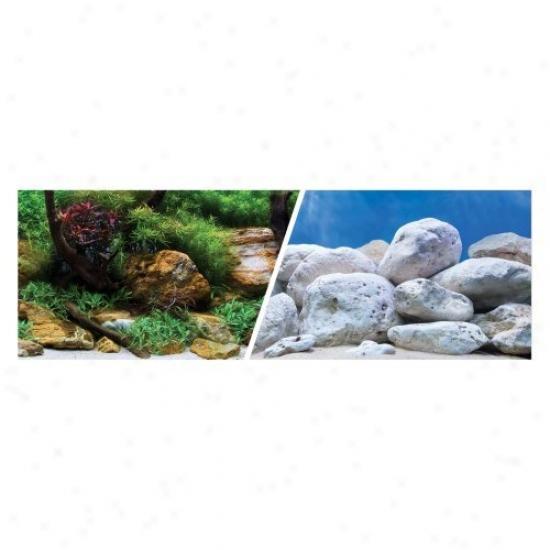 Marina Seaview Background Aquatic Garden/bright Stone