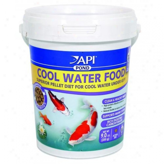 Mars Fishcare 197a Api Pond - Cool Water Food