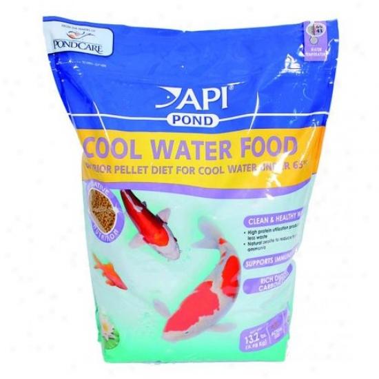 Mars Fishcare 197g Api Pond - Cool Water Food