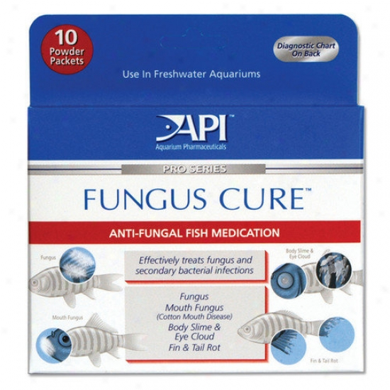 Mars Fishcare North America Fungus Cure Powder Fish Medication