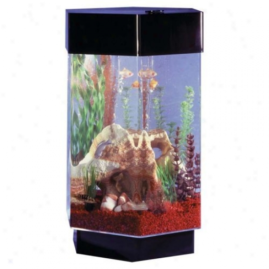 Midwest Tropical Hexagon Aqua Scape Aquarium