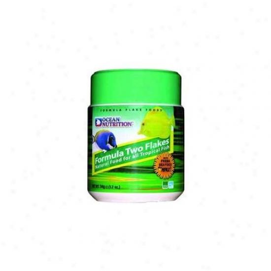 Ocean Nutrition - Salt Creek - Aon25540 Formula Two Flake 5. 5oz