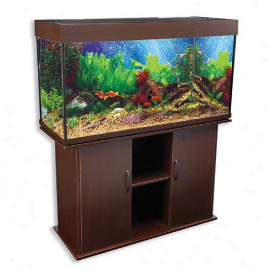 Penn Plax Delta Queen V Rectangular Aquarium And Stand