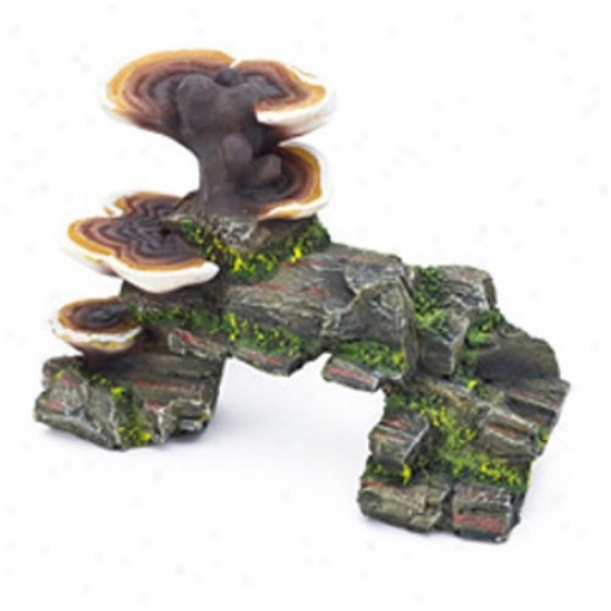 Penn Plax Mushrooms On Rock Aquarium Devor - Large