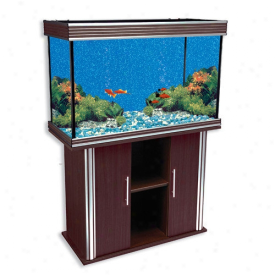 Penn Plax Nautilu sIii Aquarium With Silver Trim And Stand