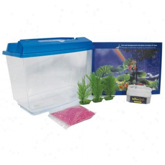 Penn-plax Nwk25 2.5 Gallon Goldfish And Betta Aquarium Kit
