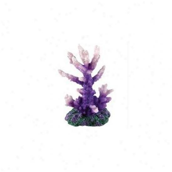 Pure Aqatic - Design Elements P1um Perfect Acro Coral Ornament- Plum Perfect - 260218