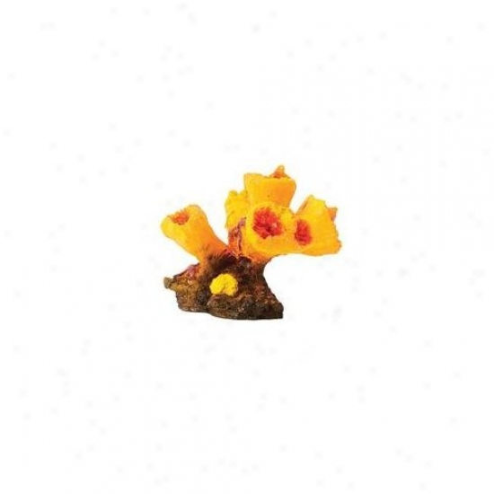 Pure Aquatic Design Elements Torch Coral Aquarium Embellishment