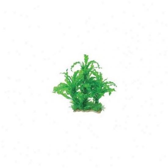 Pure Aquatic Natural Elements Aponogeton Combo Aquarium Ornament In Green