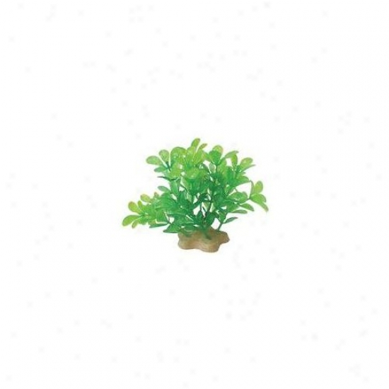 Pure Aquatic Natural Elements Bacopa Aquarium Ornament In Green