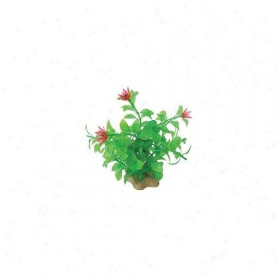 Pure Aquatic Natural Elements Blooming Ludwigia Aquarium Ornament In Unripe / Red