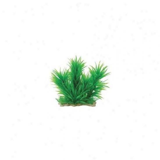 Pure Aquatic Natural Elements Blyxa Combo Aquarium O5nament In Green