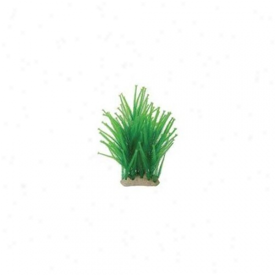 Pure Aquatic Natural Elements Club Moss Aquarium Ornament In Green