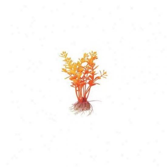 Pure On Natural Elements Flaming Lindernia Aquarium Ornament In Orange