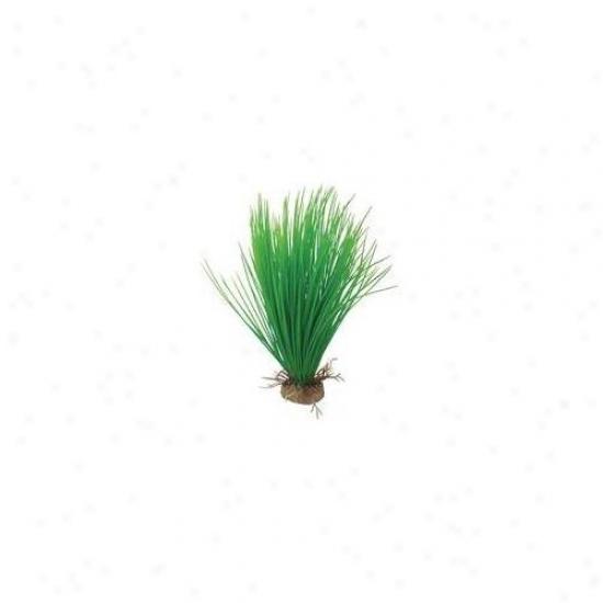Pure Aquatic Natural Elements Hairgrass Aquarium Ornament In Lawn