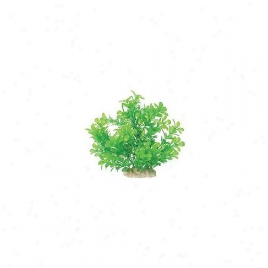 Pure Aquatic Natural Elements Mneywort Aquarium Ornament In Green