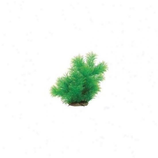 Pure Aquatic Natural Elements Myriophyllium Aquarium Ornament In Green
