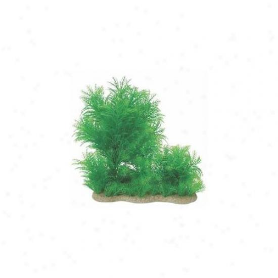Pure Aquatic - Naturzl Elements Myriophyllium Combo- Green 10-16 Inch - 252715