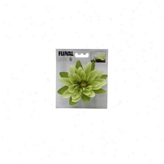 Rc Hayen 12192 Fluval Chi Lily Flower Ornament