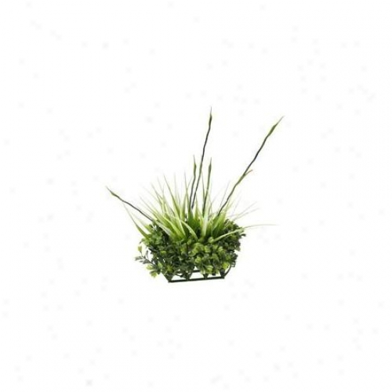 Rc Hagen 12193 Fluval Chi Boxwood And Tall Grass Ornament