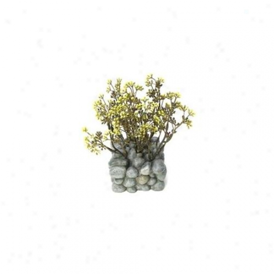 Rc Hagen 12195 Fluval Chi Plant With Pebblr Base Ornament