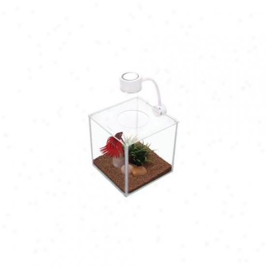 Rc Hagsn 13485 Marina Cubus Glass Betta Kit