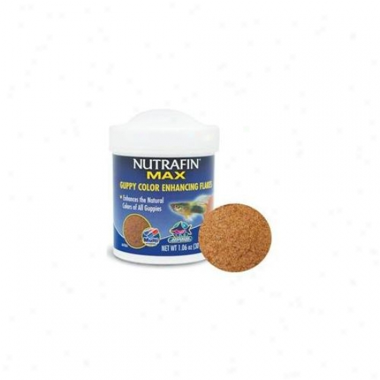 Rc Hagen A6786 Nutrafin Mzx Guppy Color Enhancing Flakes 1. 06 Oz
