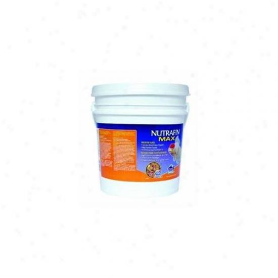 Rc Hagen A6840 Nutrafin Max Goldfish Flakes 4. 41 Lb