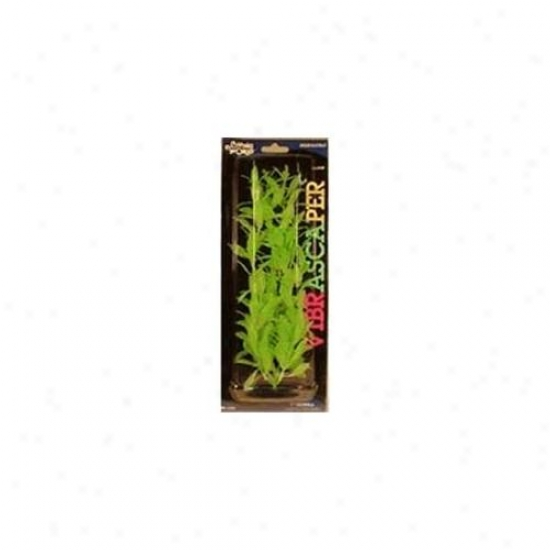 Rc Hagen Pp1243 Hygrophila, Green Dayglo