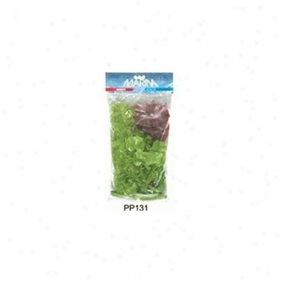 Rd Hagen Pp131 Marina Aquascaper Variety Pack, Includes 1 Ea, Pp1212,pp1508,pp506,pp804,pp811