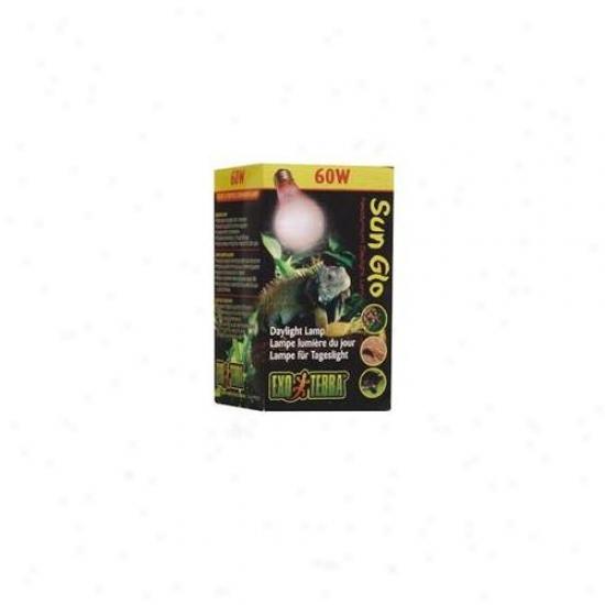 Rc Hagen Pt2110 Exo Terra Sun-glo Neodymium A19 Lamp, 60w