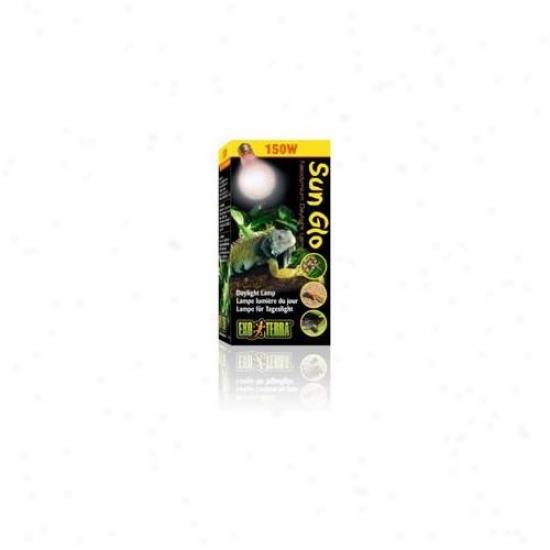 Rc Hagen Pt2114 Exo Terra Sun-glo Neodymium A21 Lamp, 150w