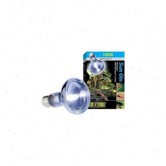 Rc Hagen Pt2183 Exo Terra Sun-glo Daylight Halogen Lamp, 100w