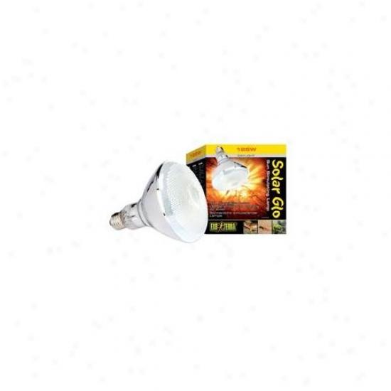 Rc Hagen Pt2192 Exo Terra Solar-glo Self Ballasted Mercury Vapor Lamp, 125w
