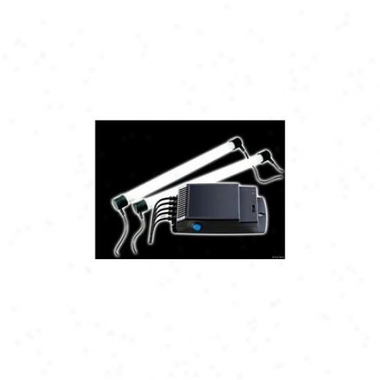 Rc Hagen Pt2241 Exo Terra Electronic Dimming Terrarium Lamp Controller, 2 X 20 W Ccsaus