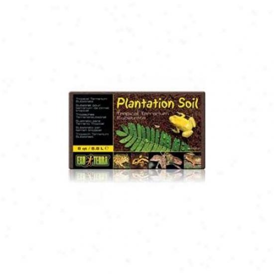 Rc Hagen Pt2770 Exo Terra Plzntation Soil, 8 Qt.