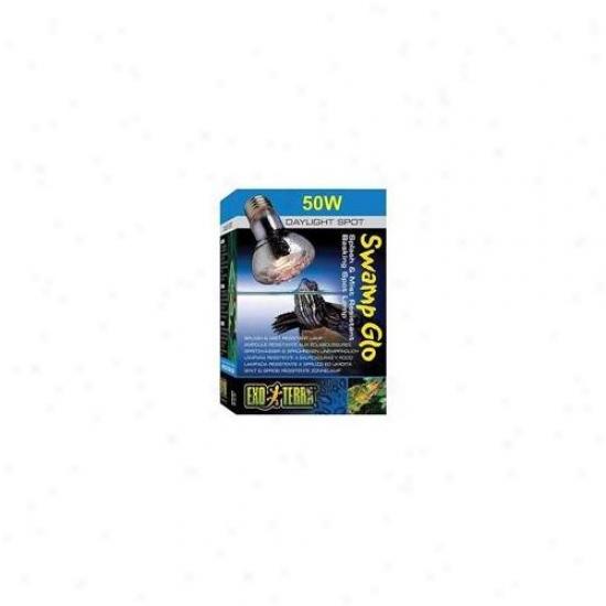 Rc Hgen Pt3780 Exo Terra Sun Glo Basking Disgrace Bulbs, 50w