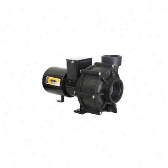 Sequence Pumps Asedart Reeflo Dart Water Pump 3600 Gph