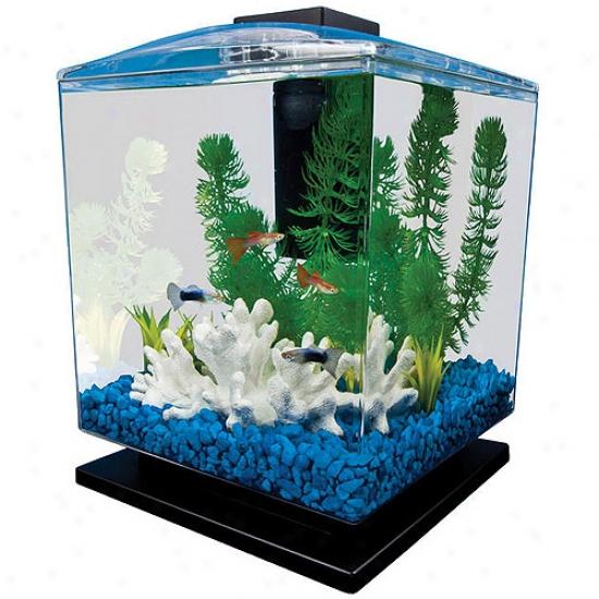 Tetra Aquarium Cube Tank, 1.5 Gallons
