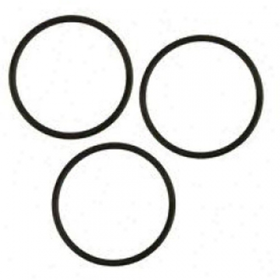 Tetra Pond Quartz Sleeeb O-rings (3 Pack)