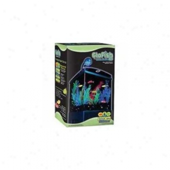 United Pet Group Tetra 972150 Tetra Glofish Aquarium Kit - 1. 5 Gallon