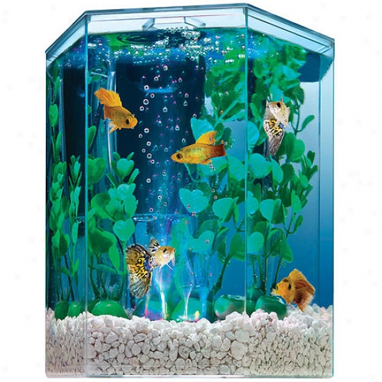 United Angry mood Cluster Tetra - Bubbling LedH exagon Kit 1 Gallon - 29040-00