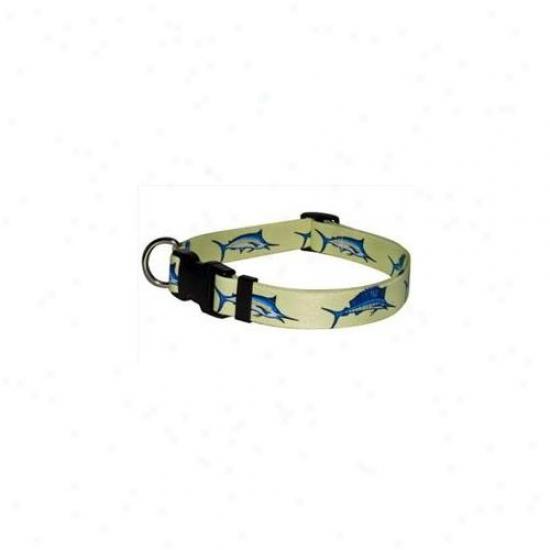 Yellow Dog Intention Blf100c Bill Fish Standard Collar - Cat