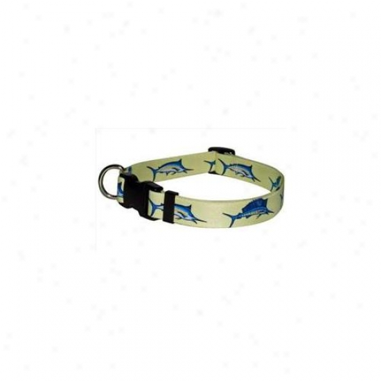 Yellow Dog Design Blf100xe Bill Fish Standard Collar - Extra Small