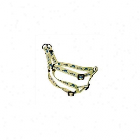 Yellow Dog Design Si-blf101s Bill Fish Stepi-n Harness - Small